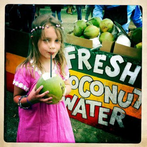 Applecart coconut