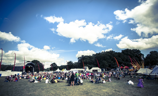 Blissfields 2012 day