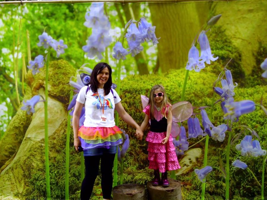 Fairy Fair 2014