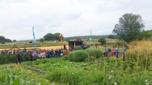 The vegetable garden acoustic stage