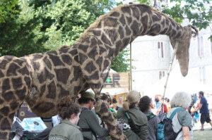 giraffe camp bestival