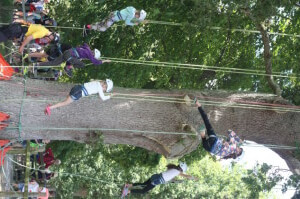 tree climb camp bestival