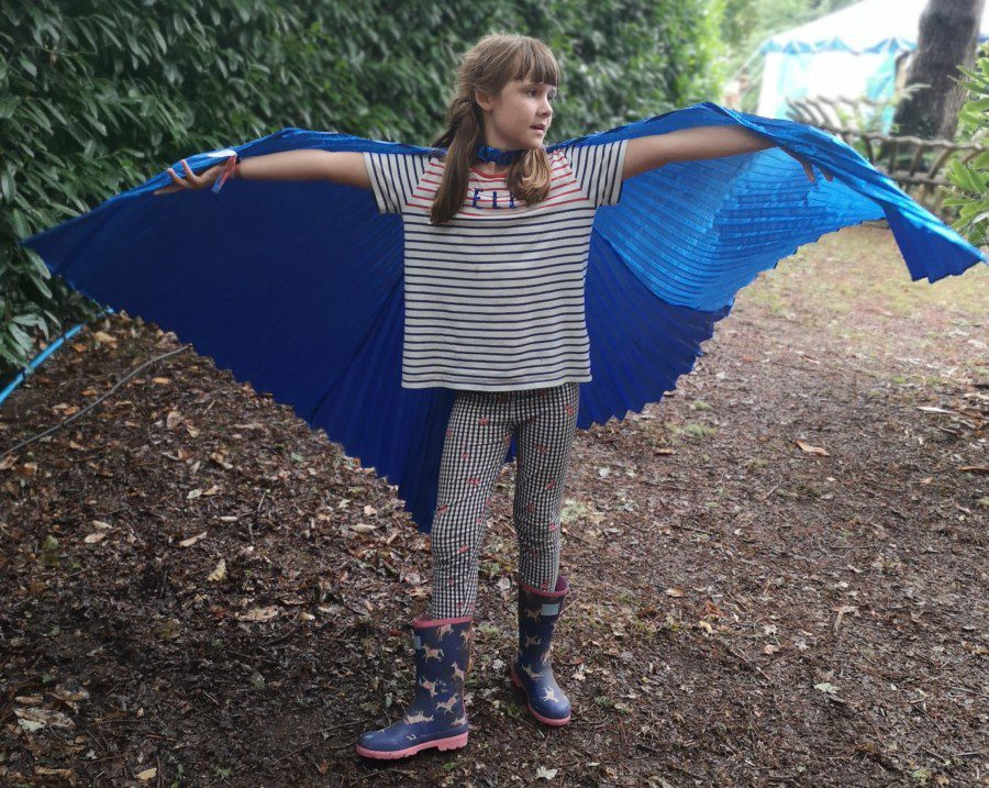 Port Eliot wings
