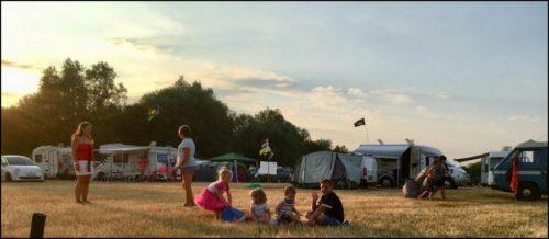 wild festivals